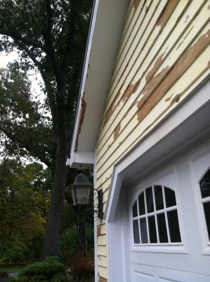 Exterior Repair and Paint
